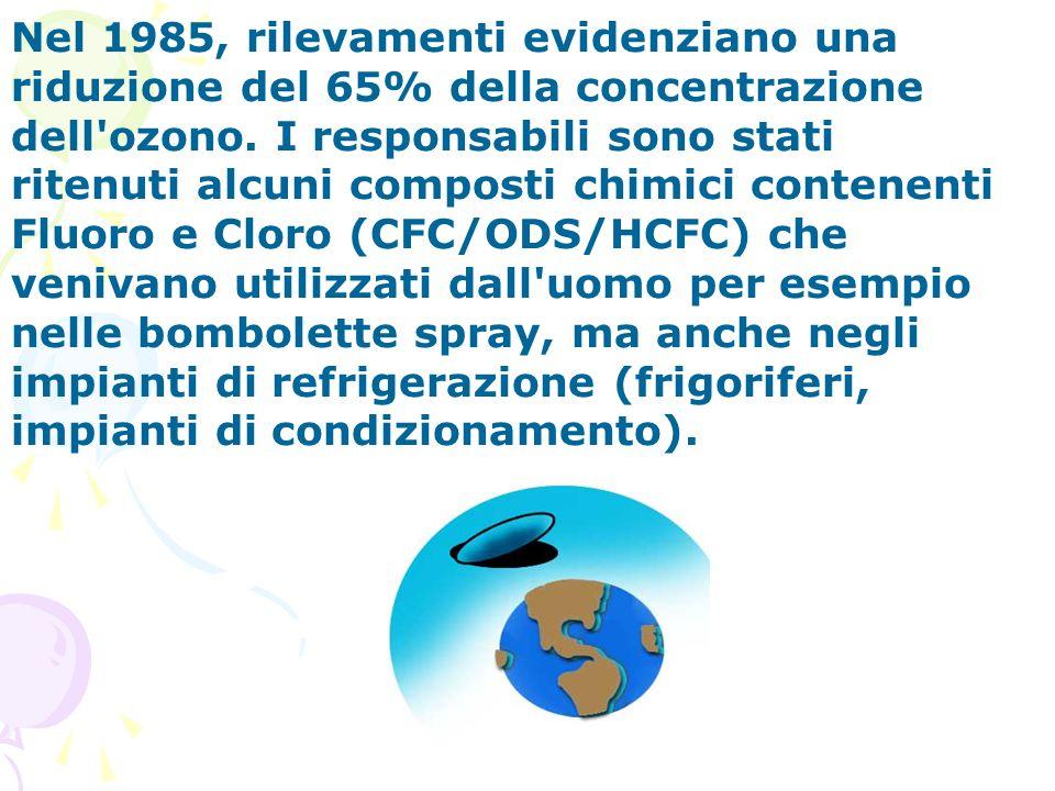Nel 1985, rilevamenti evidenziano una riduzione del 65% della concentrazione dell'ozono. I responsabili sono stati ritenuti alcuni composti chimici co