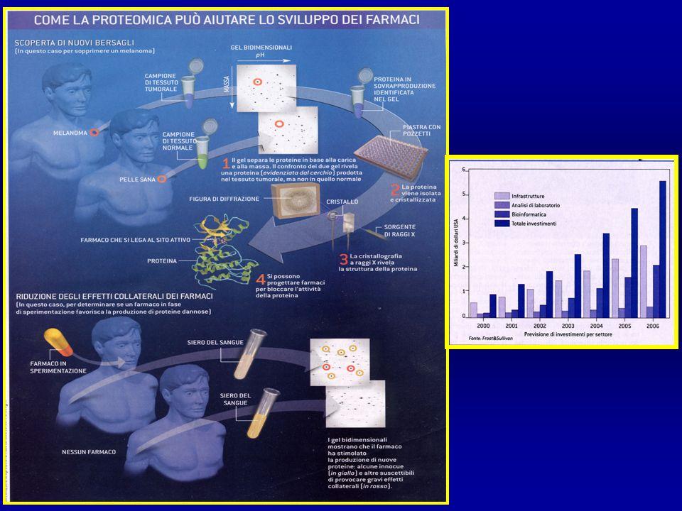LA FUNZIONE DELLE PROTEINE NELLERA POSTGENOMICA CLASSICAPOST GENOMICA