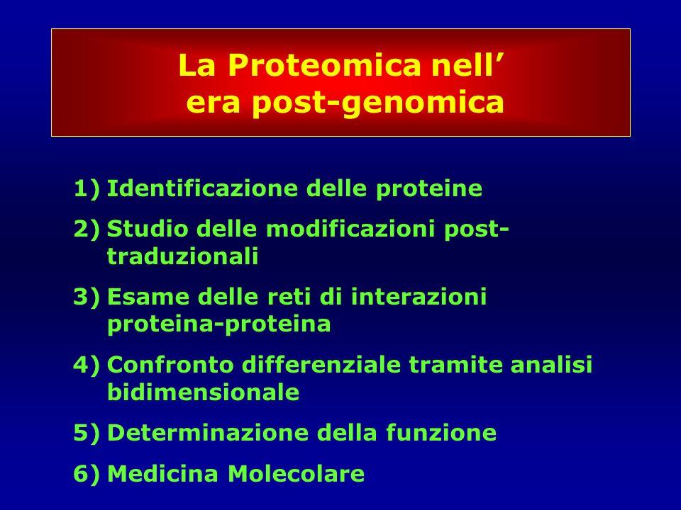 La Proteomica nellera post-genomica