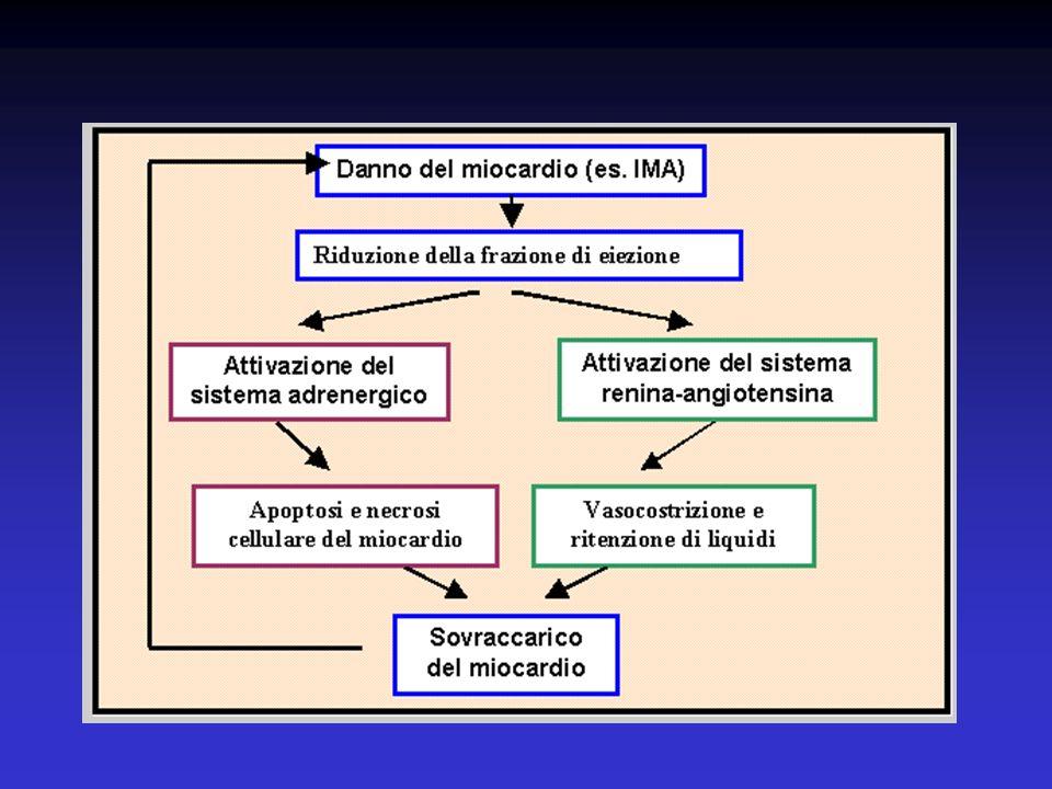 Ipoperfusione renale, vasocostrizione, attivazione SRAA, ritenzione di sodio
