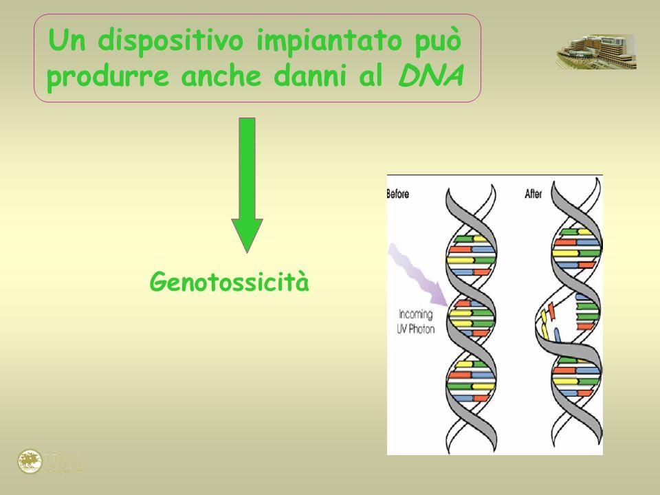 Genotossicità Un dispositivo impiantato può produrre anche danni al DNA