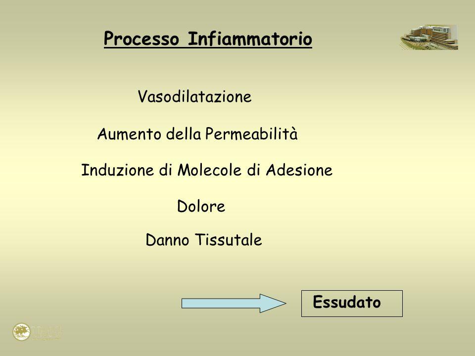 Processo Infiammatorio Induzione di Molecole di Adesione Vasodilatazione Aumento della Permeabilità Dolore Danno Tissutale Essudato