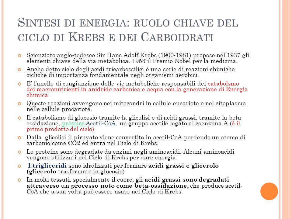 S INTESI DI ENERGIA : RUOLO CHIAVE DEL CICLO DI K REBS E DEI C ARBOIDRATI Scienziato anglo-tedesco Sir Hans Adolf Krebs (1900-1981) propose nel 1937 gli elementi chiave della via metabolica.