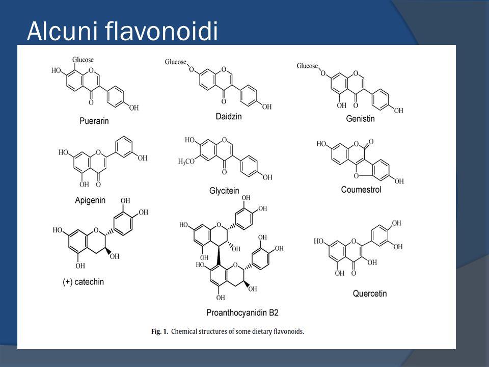 Alcuni flavonoidi