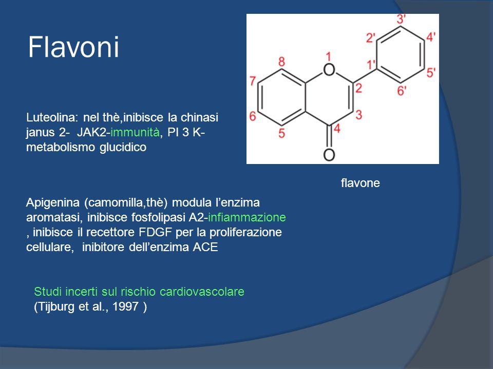 Flavoni flavone Apigenina (camomilla,thè) modula lenzima aromatasi, inibisce fosfolipasi A2-infiammazione, inibisce il recettore FDGF per la prolifera