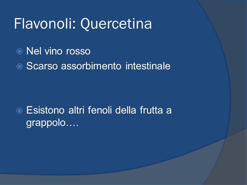 Flavonoli: Quercetina Nel vino rosso Scarso assorbimento intestinale Esistono altri fenoli della frutta a grappolo….