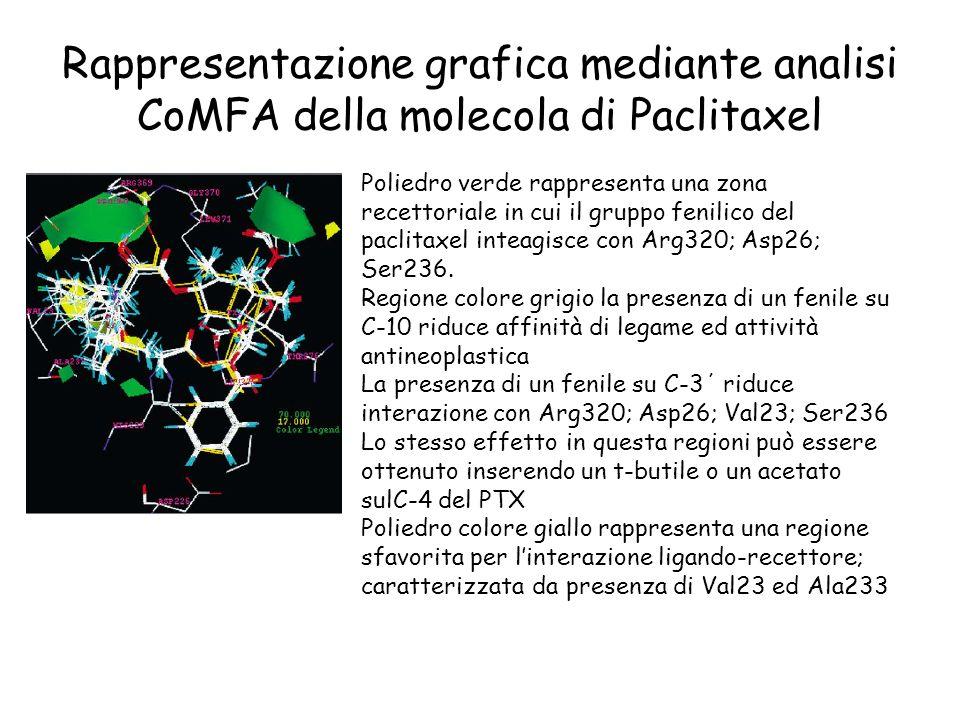 Rappresentazione grafica mediante analisi CoMFA della molecola di Paclitaxel Poliedro verde rappresenta una zona recettoriale in cui il gruppo fenilic