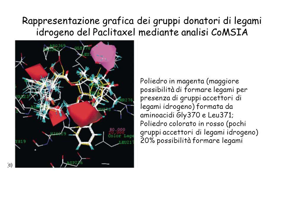 Rappresentazione grafica dei gruppi donatori di legami idrogeno del Paclitaxel mediante analisi CoMSIA Poliedro in magenta (maggiore possibilità di fo