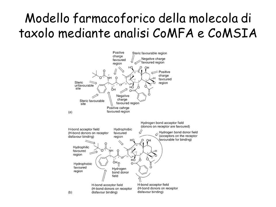 Modello farmacoforico della molecola di taxolo mediante analisi CoMFA e CoMSIA