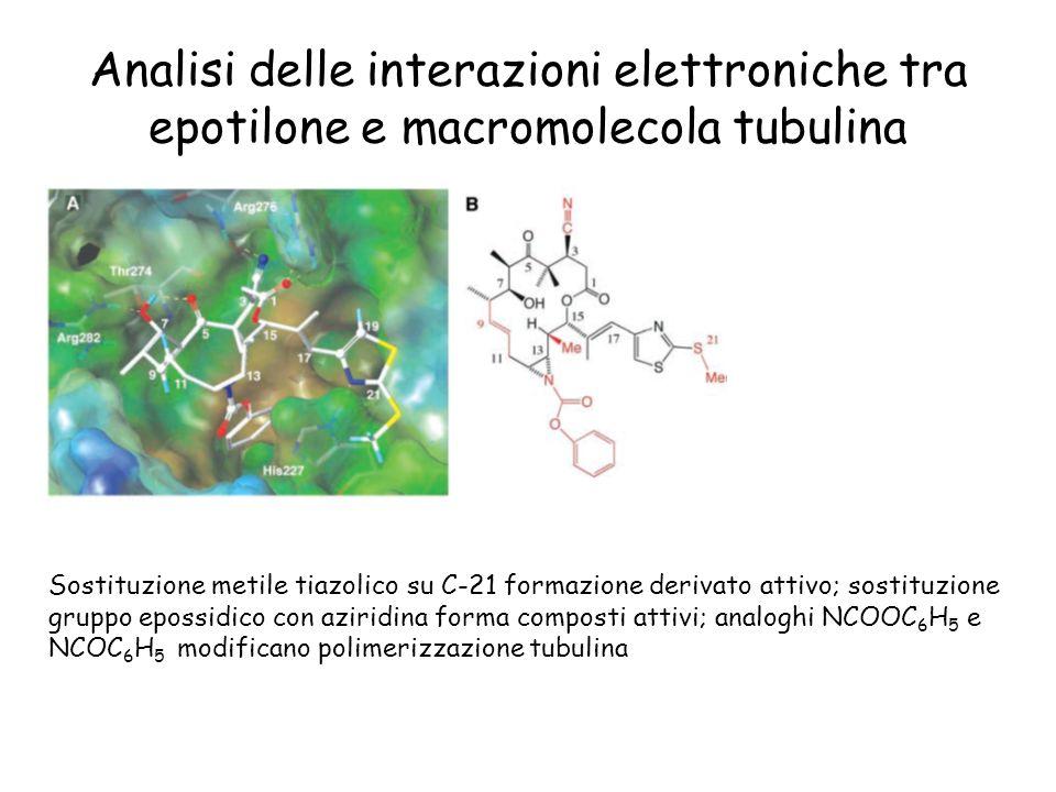 Analisi delle interazioni elettroniche tra epotilone e macromolecola tubulina Sostituzione metile tiazolico su C-21 formazione derivato attivo; sostit