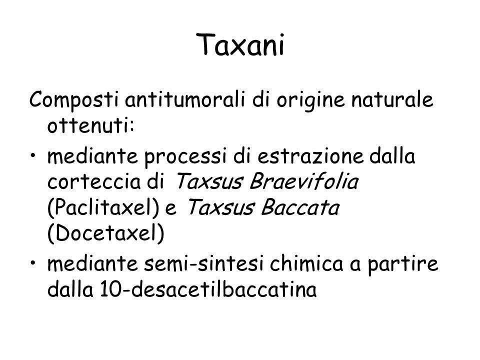 Taxani Composti antitumorali di origine naturale ottenuti: mediante processi di estrazione dalla corteccia di Taxsus Braevifolia (Paclitaxel) e Taxsus
