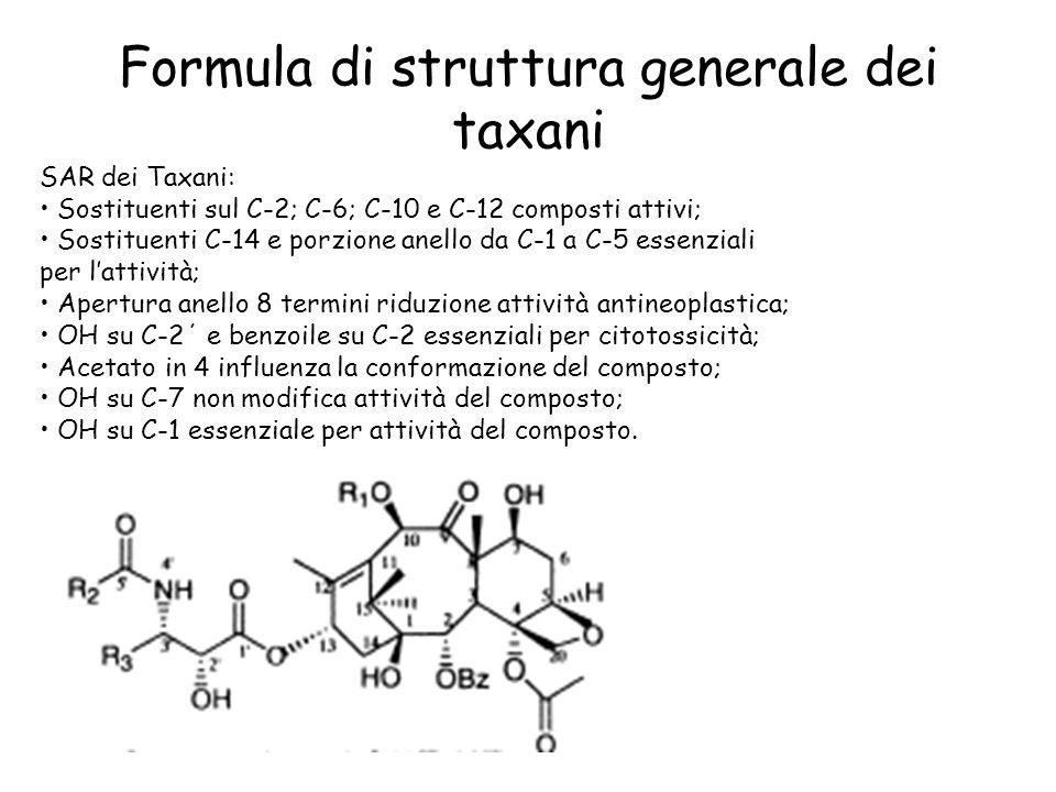 Formula di struttura generale dei taxani SAR dei Taxani: Sostituenti sul C-2; C-6; C-10 e C-12 composti attivi; Sostituenti C-14 e porzione anello da