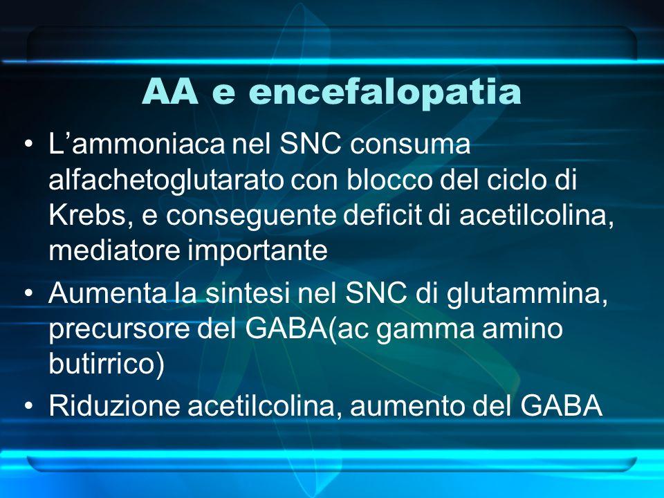 AA e encefalopatia Lammoniaca nel SNC consuma alfachetoglutarato con blocco del ciclo di Krebs, e conseguente deficit di acetilcolina, mediatore impor