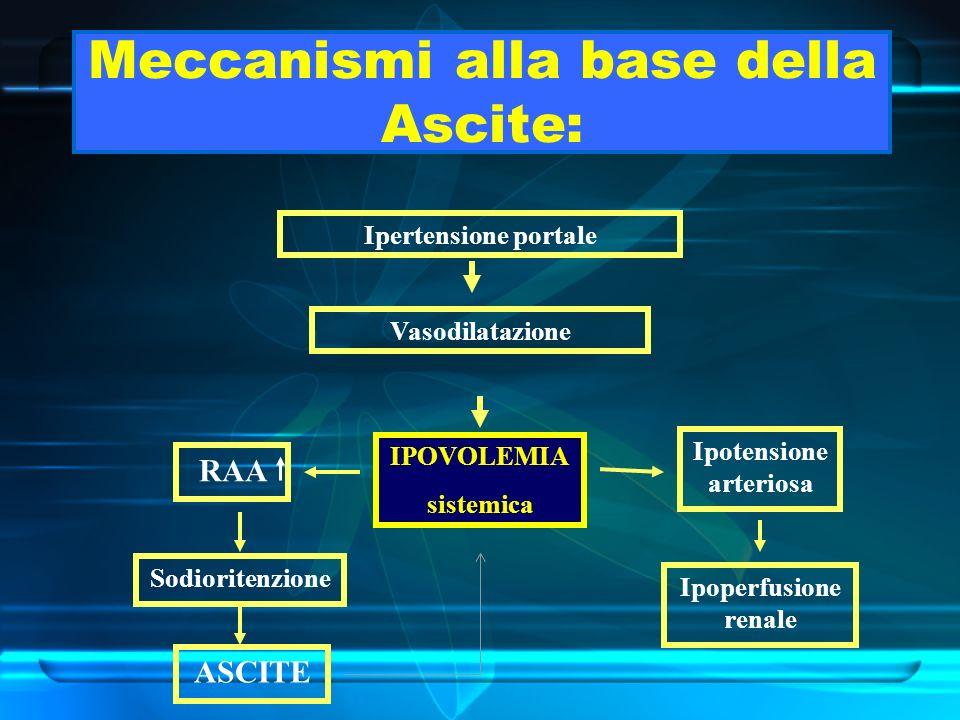 Meccanismi alla base della Ascite: Ipertensione portale Vasodilatazione IPOVOLEMIA sistemica RAA Ipotensione arteriosa Sodioritenzione Ipoperfusione r