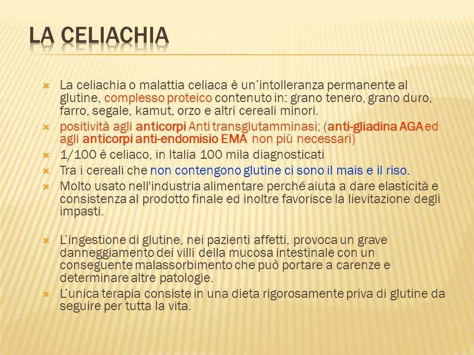 La celiachia o malattia celiaca è unintolleranza permanente al glutine, complesso proteico contenuto in: grano tenero, grano duro, farro, segale, kamu
