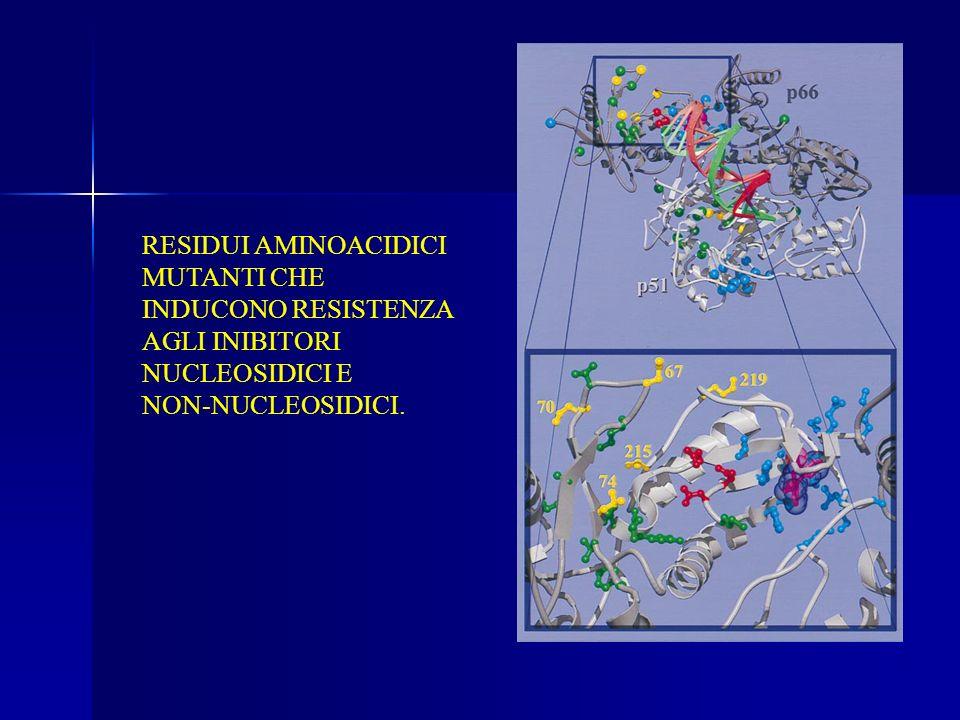 RESIDUI AMINOACIDICI MUTANTI CHE INDUCONO RESISTENZA AGLI INIBITORI NUCLEOSIDICI E NON-NUCLEOSIDICI.