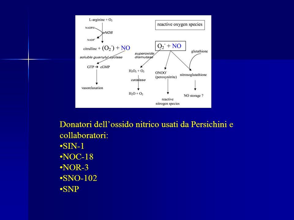 Donatori dellossido nitrico usati da Persichini e collaboratori: SIN-1 NOC-18 NOR-3 SNO-102 SNP