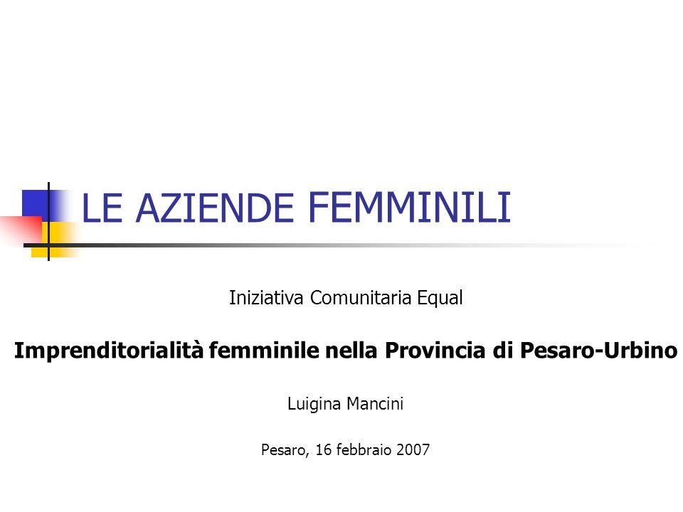 LE AZIENDE FEMMINILI Iniziativa Comunitaria Equal Imprenditorialità femminile nella Provincia di Pesaro-Urbino Luigina Mancini Pesaro, 16 febbraio 2007