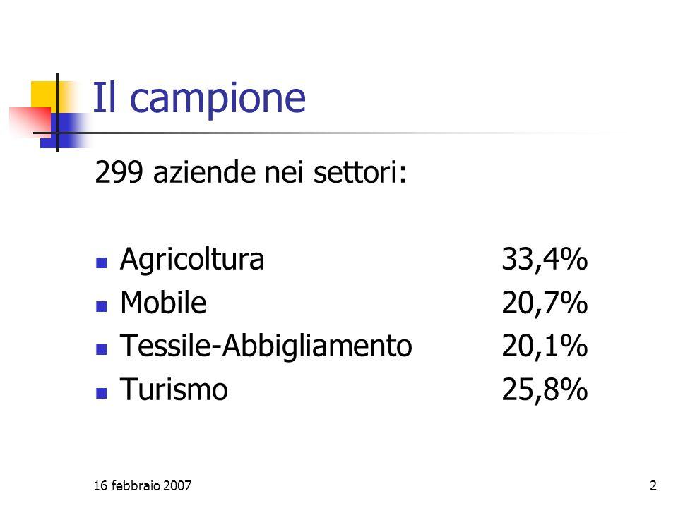 16 febbraio 20072 Il campione 299 aziende nei settori: Agricoltura33,4% Mobile 20,7% Tessile-Abbigliamento 20,1% Turismo 25,8%