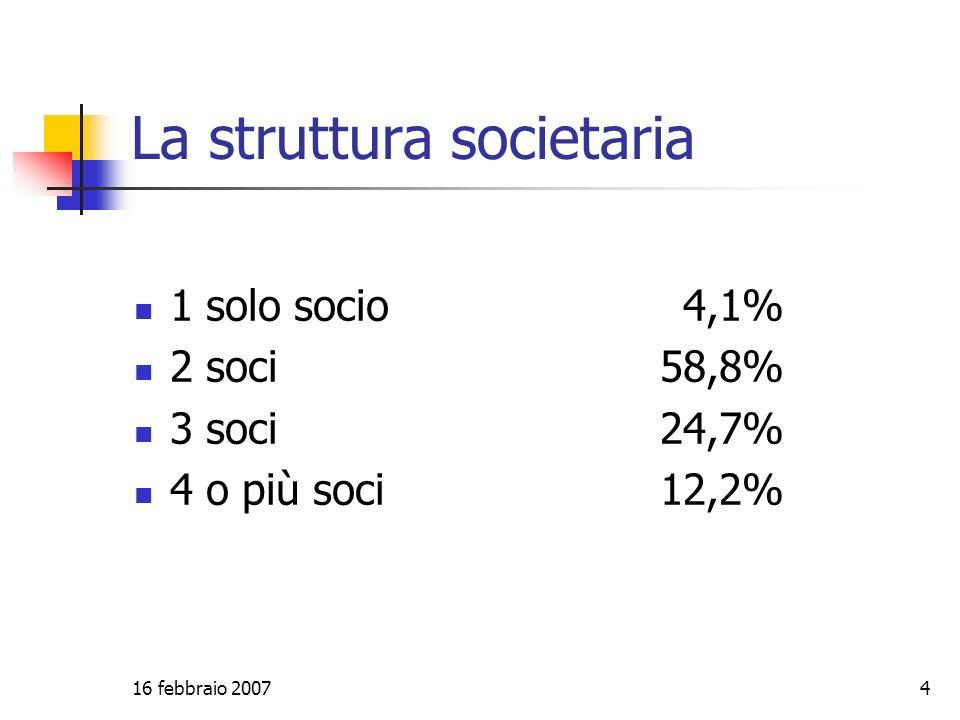 16 febbraio 20074 La struttura societaria 1 solo socio4,1% 2 soci58,8% 3 soci24,7% 4 o più soci12,2%