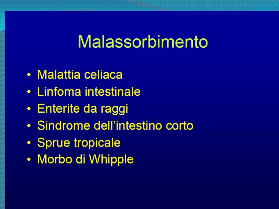 Subjective Global Assessment (SGA) e Patient Generated – PG-SGA Identifica il pz malnutrito; predice le complicanze; universale Basato sulla storia clinica, segni e sintomi GI, perdita peso, modifica intake calorico, A) nutrito B) Malnutrizione Moderata C) Malnutrizione Severa Score PG- SGA specifico per pazienti con Cancro (sintomi nutrizionali) >9 =urgenza del trattamento