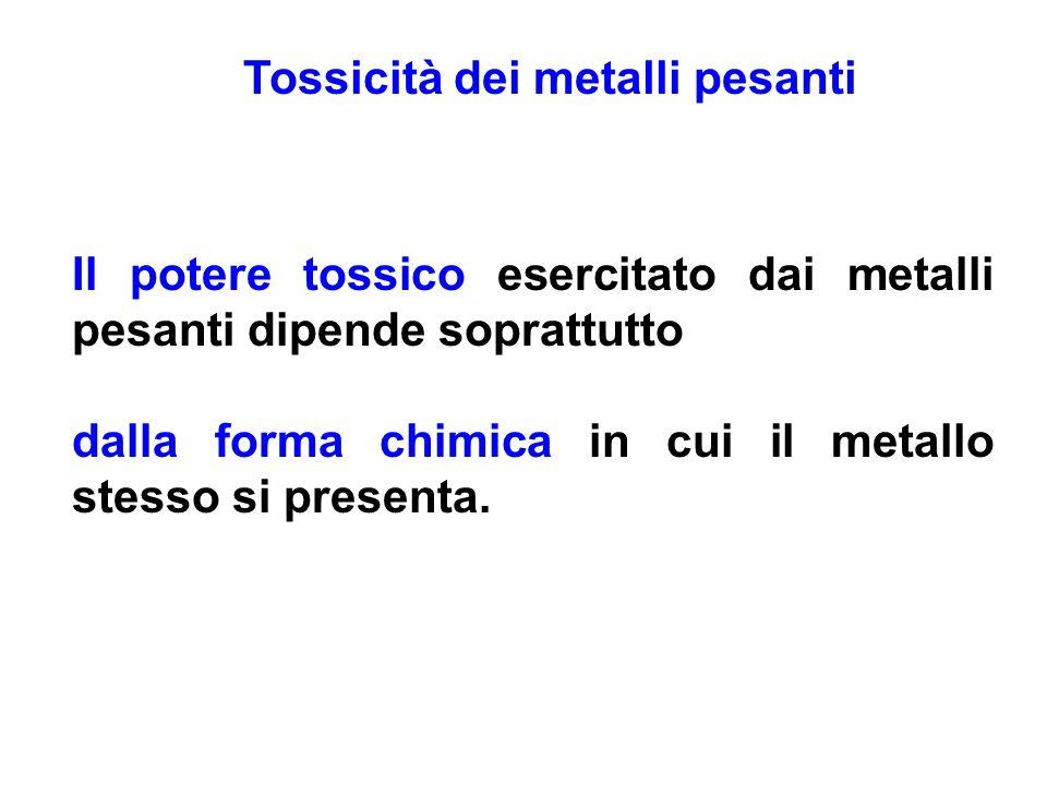 Tossicità dei metalli pesanti Il potere tossico esercitato dai metalli pesanti dipende soprattutto dalla forma chimica in cui il metallo stesso si pre