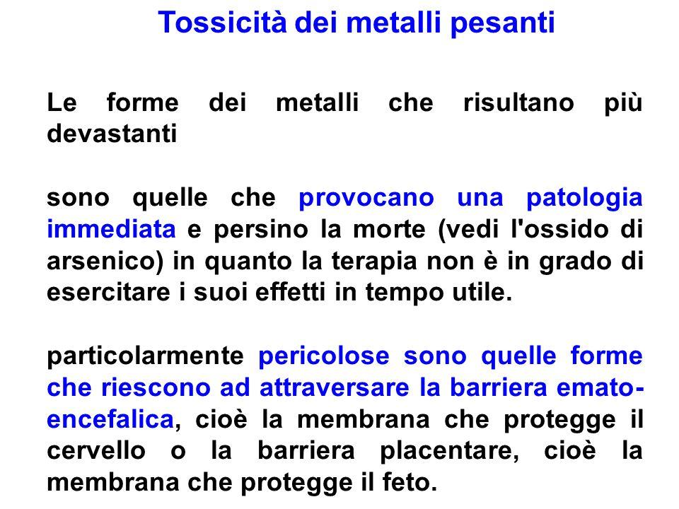 Tossicità dei metalli pesanti Le forme dei metalli che risultano più devastanti sono quelle che provocano una patologia immediata e persino la morte (