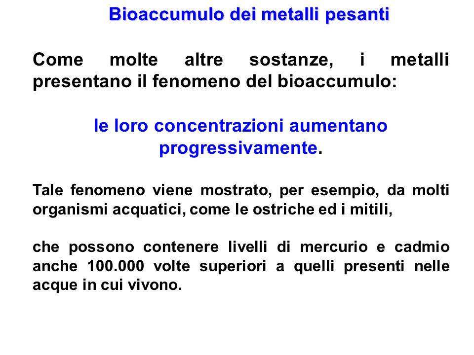 Bioaccumulo dei metalli pesanti Come molte altre sostanze, i metalli presentano il fenomeno del bioaccumulo: le loro concentrazioni aumentano progress