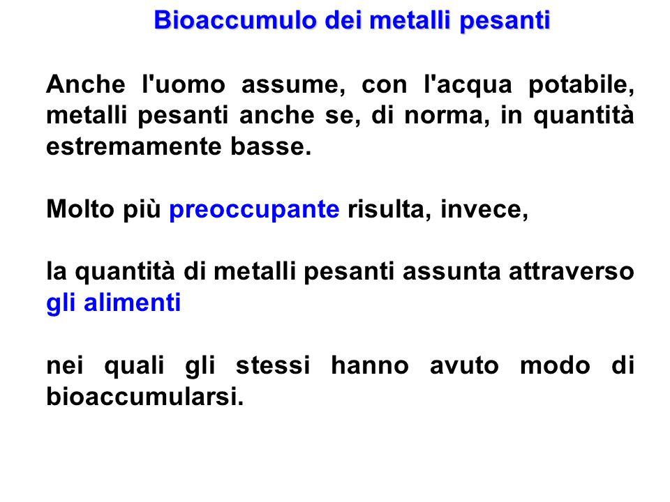 Bioaccumulo dei metalli pesanti Anche l'uomo assume, con l'acqua potabile, metalli pesanti anche se, di norma, in quantità estremamente basse. Molto p