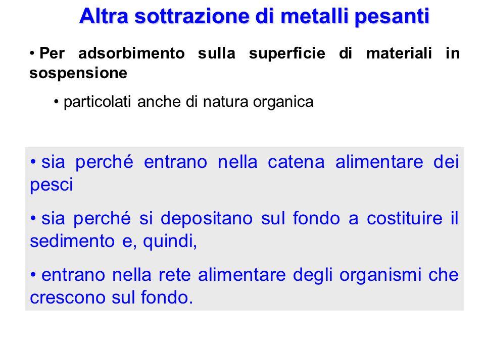 Altra sottrazione di metalli pesanti Per adsorbimento sulla superficie di materiali in sospensione particolati anche di natura organica Per precipitaz