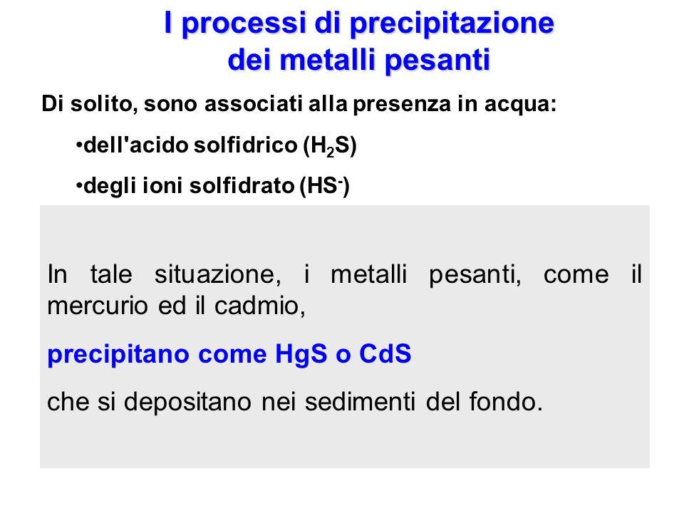 I processi di precipitazione dei metalli pesanti Di solito, sono associati alla presenza in acqua: dell'acido solfidrico (H 2 S) degli ioni solfidrato