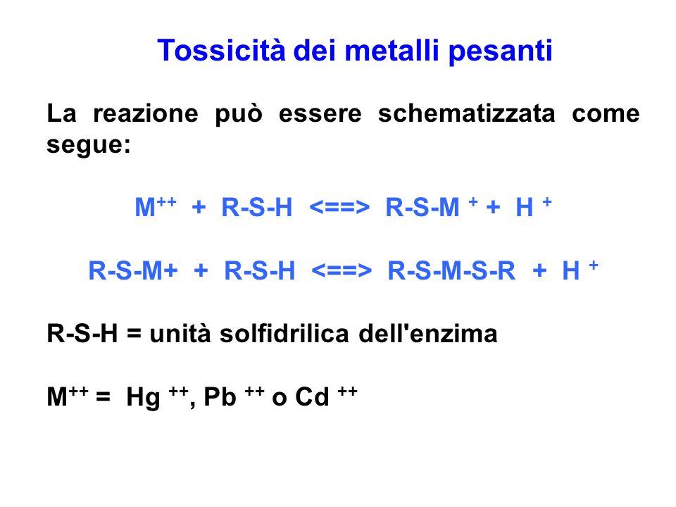 Tossicità dei metalli pesanti La reazione può essere schematizzata come segue: M ++ + R-S-H R-S-M + + H + R-S-M+ + R-S-H R-S-M-S-R + H + R-S-H = unità