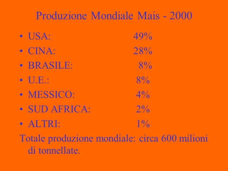 Produzione Mondiale Mais - 2000 USA: 49% CINA: 28% BRASILE: 8% U.E.: 8% MESSICO: 4% SUD AFRICA: 2% ALTRI: 1% Totale produzione mondiale: circa 600 milioni di tonnellate.