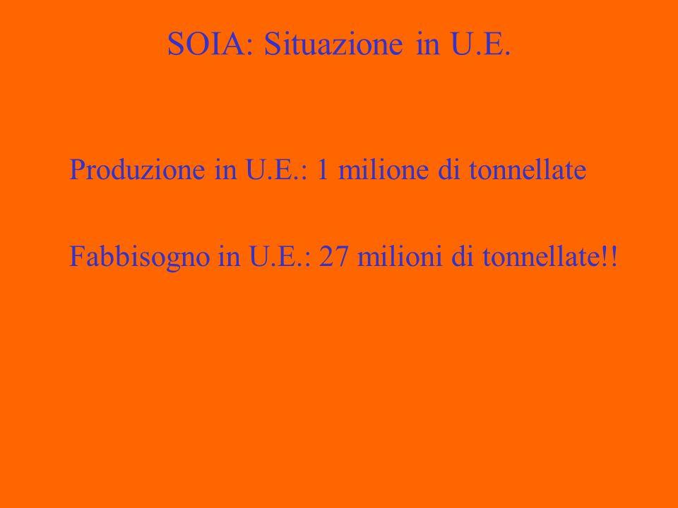 SOIA: Situazione in U.E.