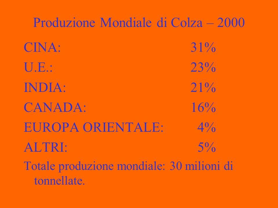 Produzione Mondiale di Colza – 2000 CINA: 31% U.E.: 23% INDIA: 21% CANADA: 16% EUROPA ORIENTALE: 4% ALTRI: 5% Totale produzione mondiale: 30 milioni di tonnellate.