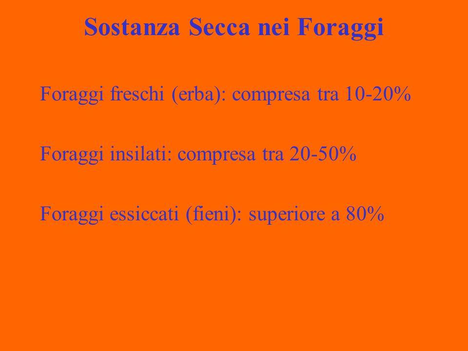 Sostanza Secca nei Foraggi Foraggi freschi (erba): compresa tra 10-20% Foraggi insilati: compresa tra 20-50% Foraggi essiccati (fieni): superiore a 80%
