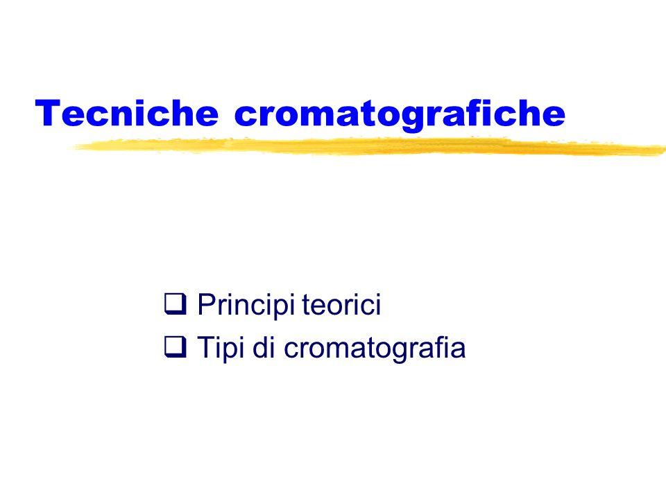 Tecniche cromatografiche Principi teorici Tipi di cromatografia