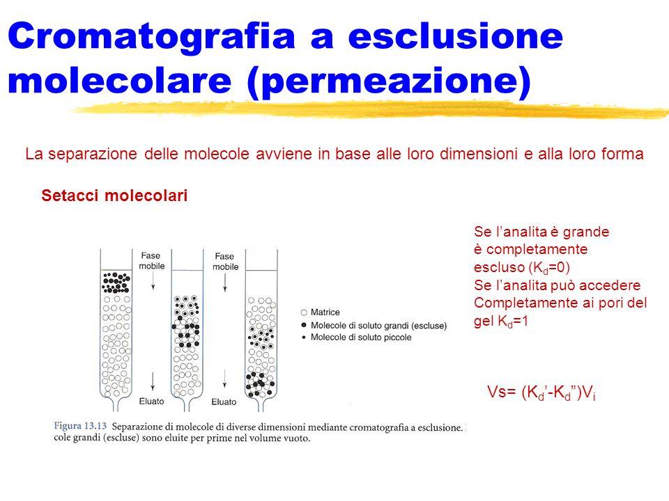 Cromatografia a esclusione molecolare (permeazione) La separazione delle molecole avviene in base alle loro dimensioni e alla loro forma Setacci molec