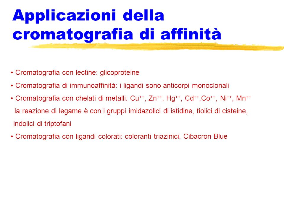 Applicazioni della cromatografia di affinità Cromatografia con lectine: glicoproteine Cromatografia di immunoaffinità: i ligandi sono anticorpi monocl