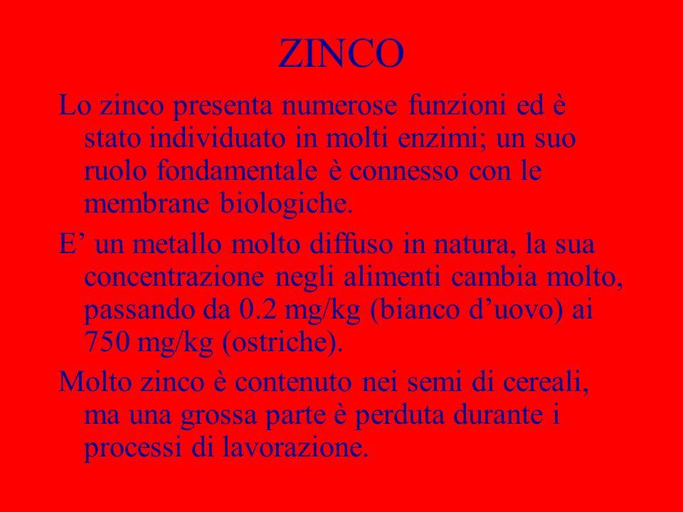 ZINCO Lo zinco presenta numerose funzioni ed è stato individuato in molti enzimi; un suo ruolo fondamentale è connesso con le membrane biologiche. E u