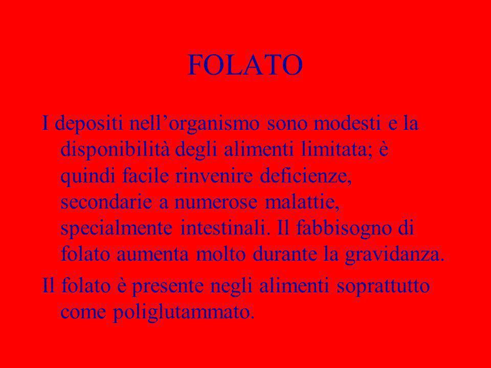 FOLATO I depositi nellorganismo sono modesti e la disponibilità degli alimenti limitata; è quindi facile rinvenire deficienze, secondarie a numerose m