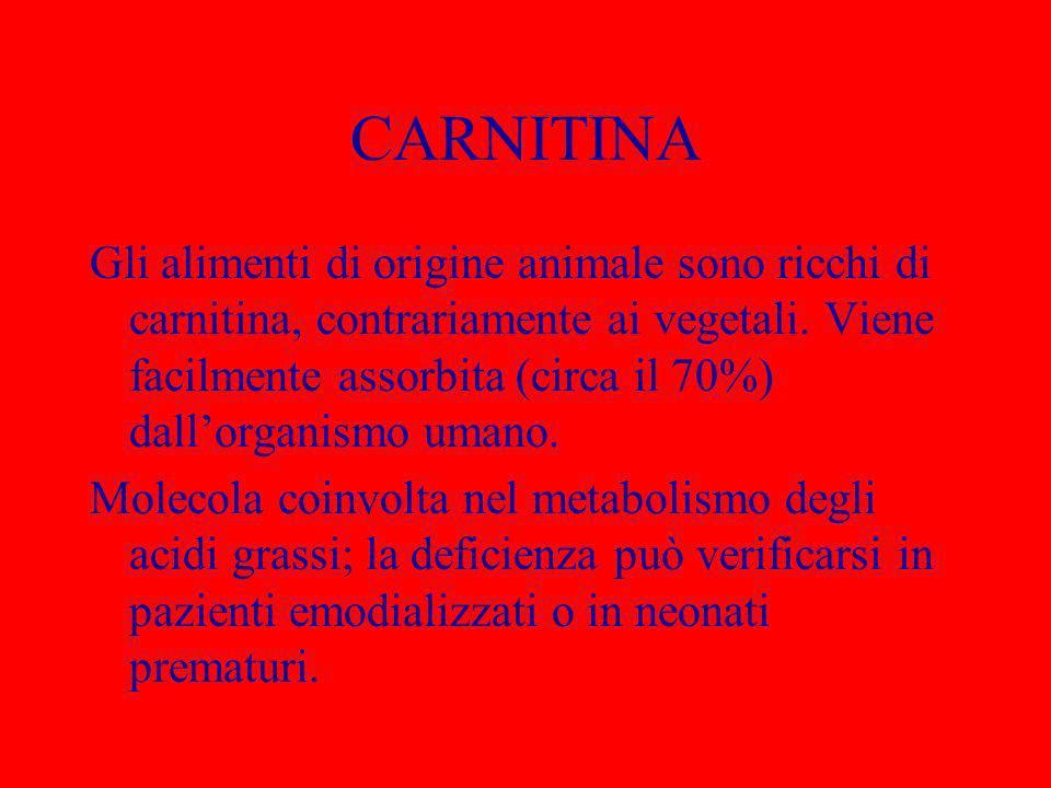 CARNITINA Gli alimenti di origine animale sono ricchi di carnitina, contrariamente ai vegetali. Viene facilmente assorbita (circa il 70%) dallorganism