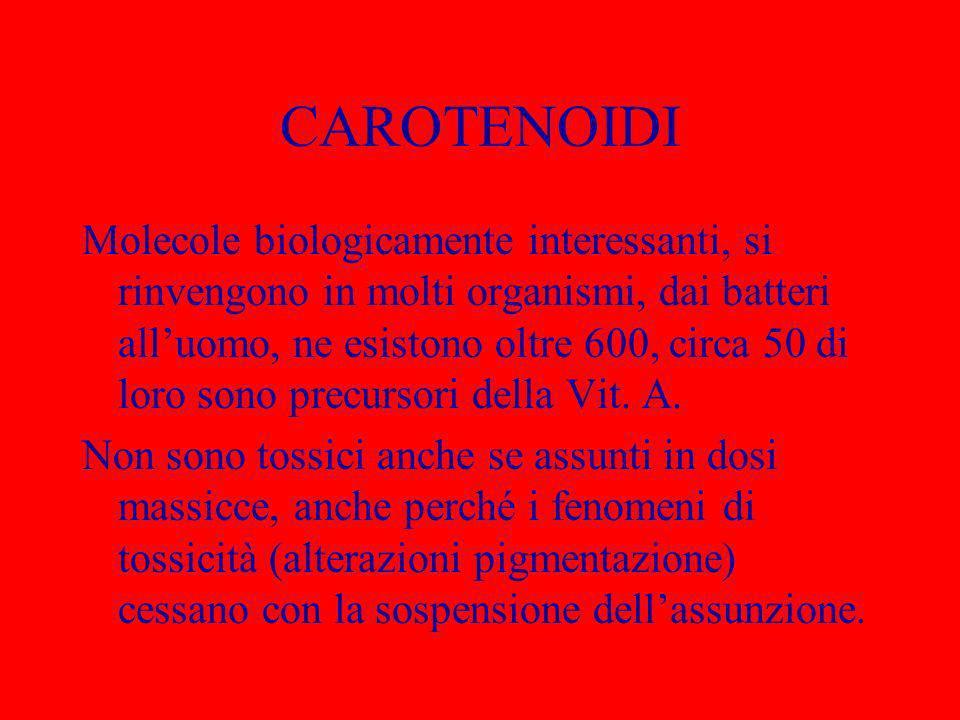 CAROTENOIDI Molecole biologicamente interessanti, si rinvengono in molti organismi, dai batteri alluomo, ne esistono oltre 600, circa 50 di loro sono