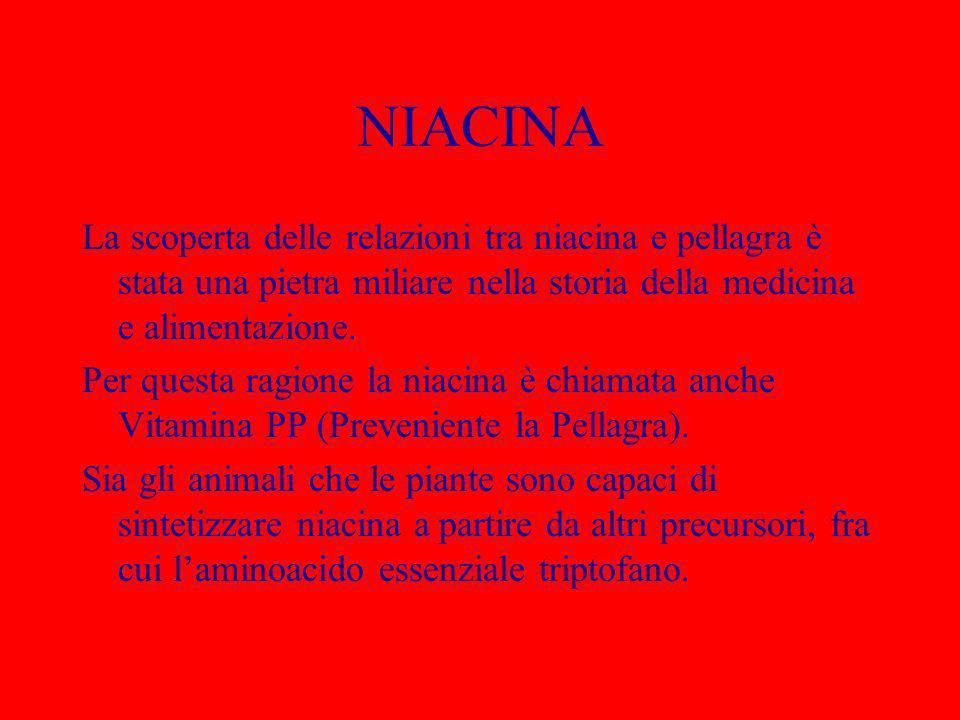 NIACINA La scoperta delle relazioni tra niacina e pellagra è stata una pietra miliare nella storia della medicina e alimentazione. Per questa ragione