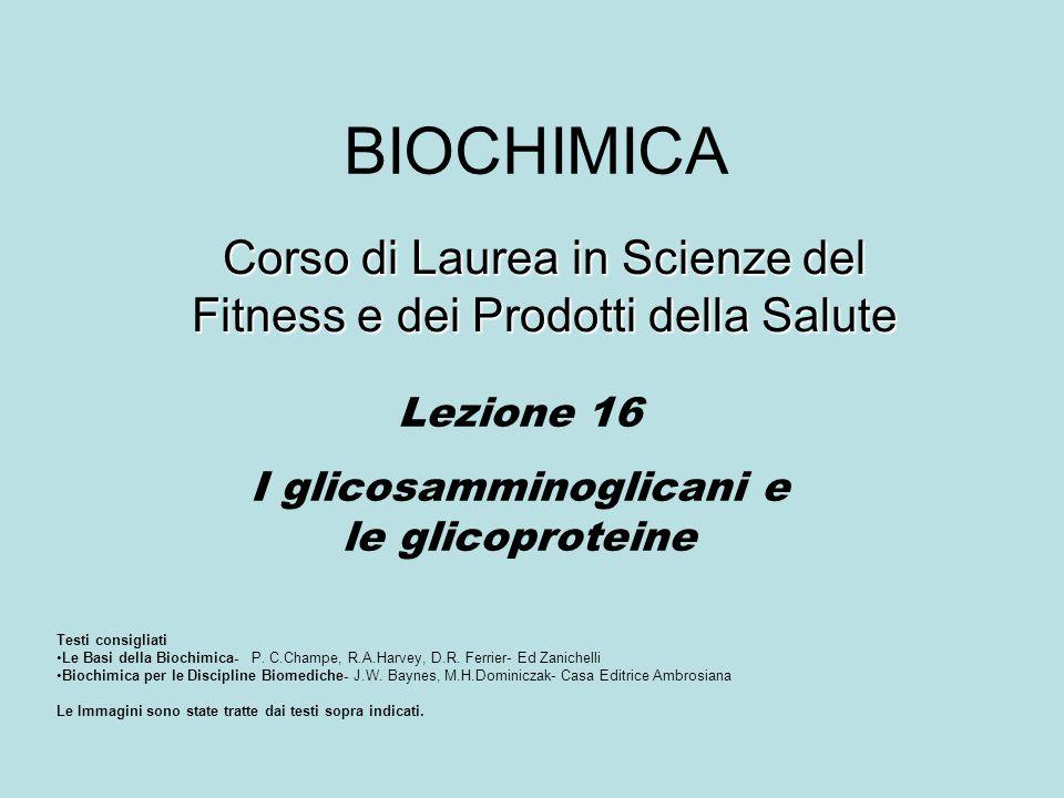 BIOCHIMICA Corso di Laurea in Scienze del Fitness e dei Prodotti della Salute Lezione 16 I glicosamminoglicani e le glicoproteine Testi consigliati Le