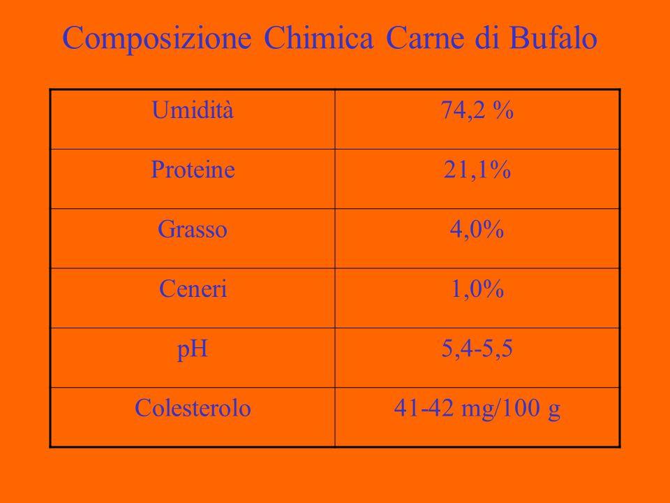 Composizione Chimica Carne di Bufalo Umidità74,2 % Proteine21,1% Grasso4,0% Ceneri1,0% pH5,4-5,5 Colesterolo41-42 mg/100 g