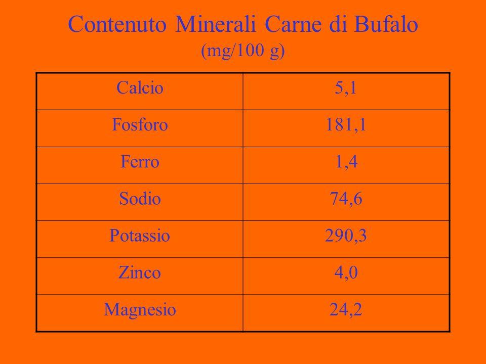 Contenuto Minerali Carne di Bufalo (mg/100 g) Calcio5,1 Fosforo181,1 Ferro1,4 Sodio74,6 Potassio290,3 Zinco4,0 Magnesio24,2