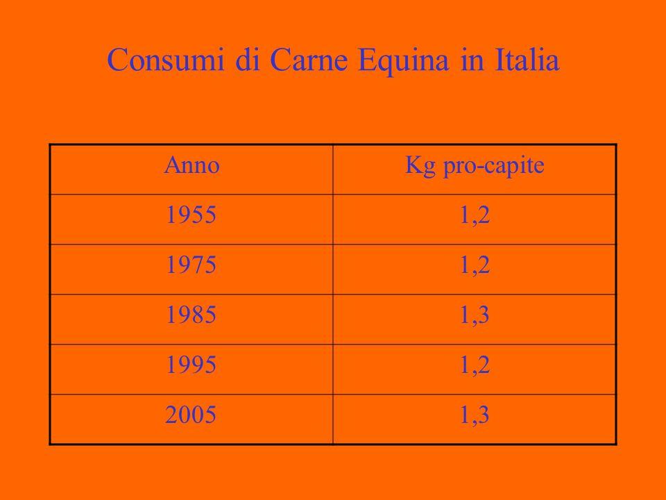 Consumi di Carne Equina in Italia AnnoKg pro-capite 19551,2 19751,2 19851,3 19951,2 20051,3