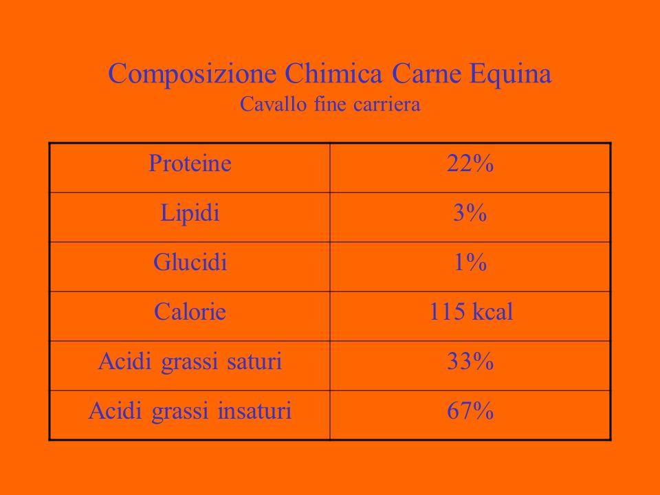 Composizione Chimica Carne Equina Cavallo fine carriera Proteine22% Lipidi3% Glucidi1% Calorie115 kcal Acidi grassi saturi33% Acidi grassi insaturi67%