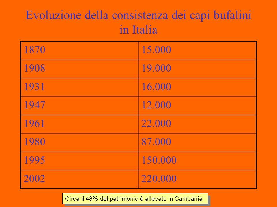 Evoluzione della consistenza dei capi bufalini in Italia 187015.000 190819.000 193116.000 194712.000 196122.000 198087.000 1995150.000 2002220.000 Circa il 48% del patrimonio è allevato in Campania